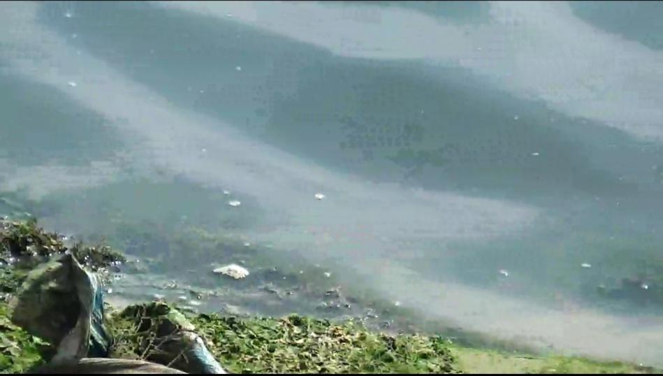 تلوث مياه نهر أبي رقراق يهدد صحة الساكنة المجاورة وصمت مريب للجهات المعنية