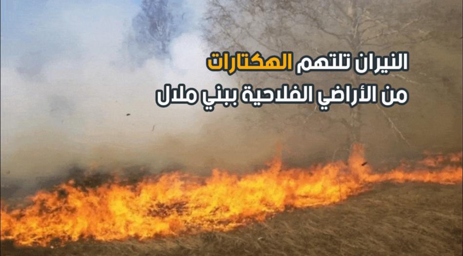 النيران تلتهم الهكتارات من الأراضي الفلاحية ببني ملال