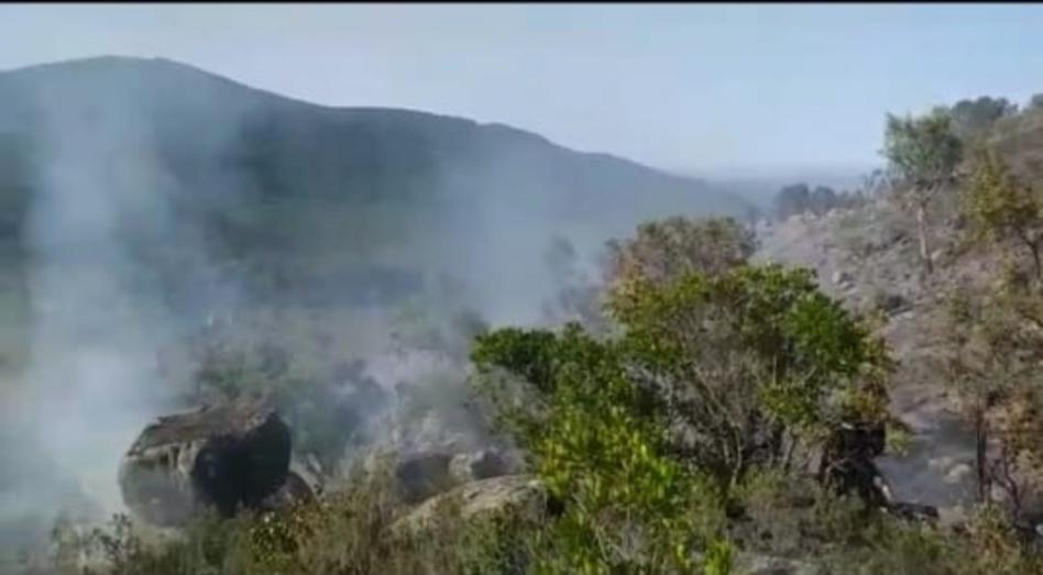 بالصور.. حريق غابة بوهاشم يعود من جديد والسلطات تستنفر