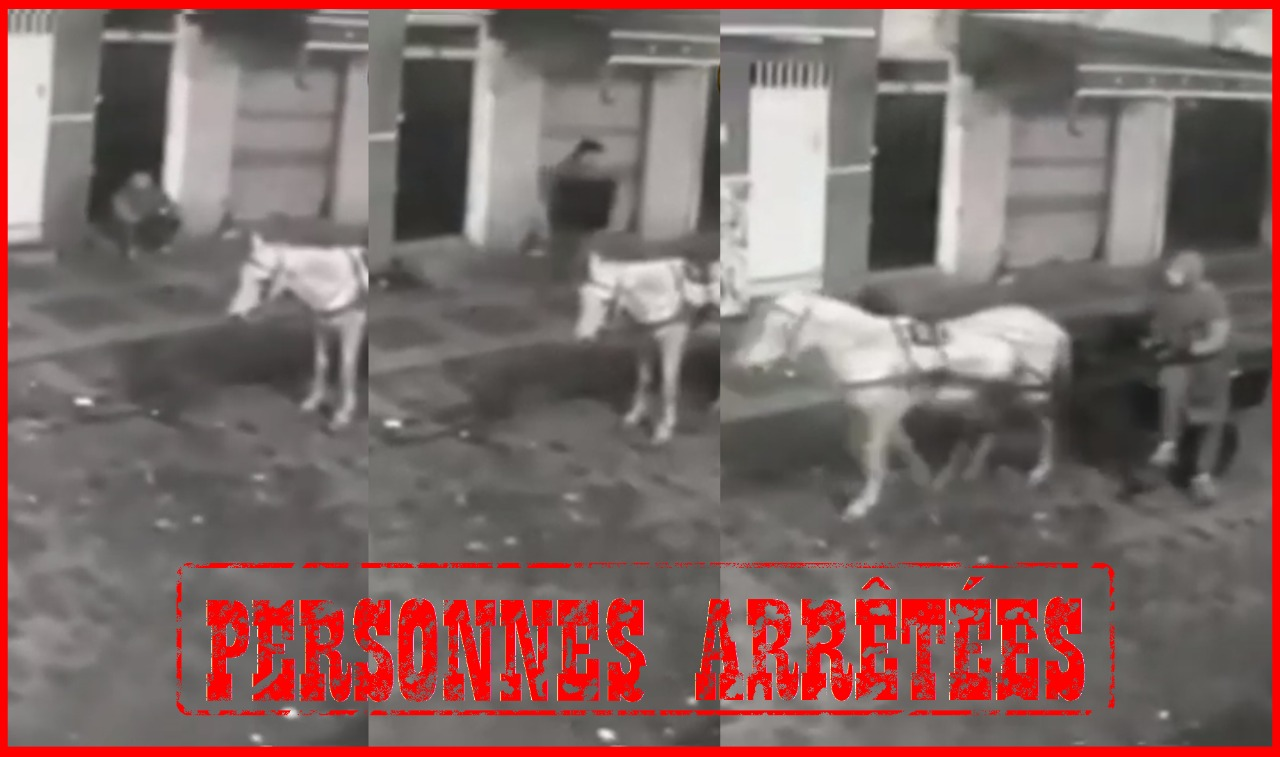 توضيح لولاية الأمن حول فيديو متداول لشخص يسرق غطاء الصرف الصحي بالقنيطرة