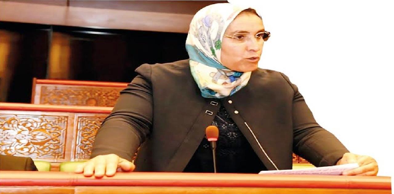رئيسة منظمة المرأة الاستقلالية: هناك تخل  كبير عن القضية النسائية وهذه الحكومة تكذب بادعائها تمكين النساء