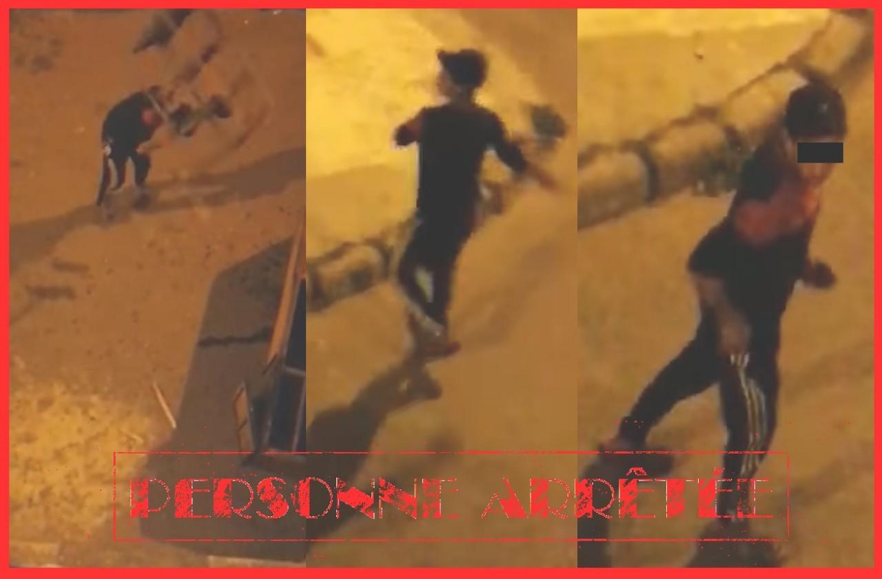 شرطة آسفي تتفاعل بسرعة مع مقطع فيديو يوثق شخصا يلحق أضرارا بممتلكات الغير