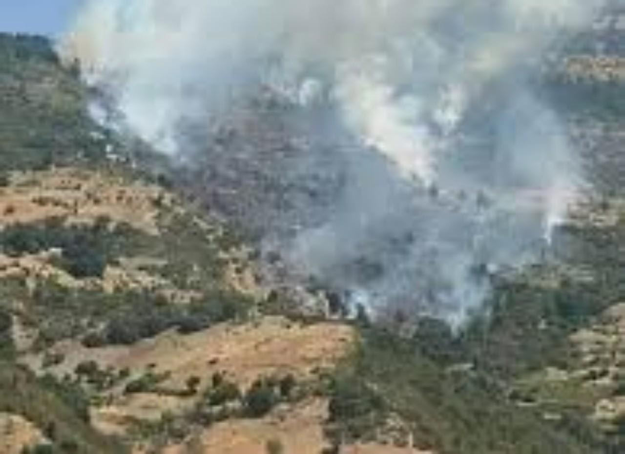 بعد حريق شفشاون.. فرق المطافئ تسيطر على حريق الريف