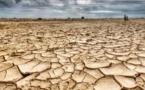 الجفاف الحاد يضرب من جديد جهة الشرق.‼
