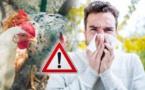 """المغرب يرفع درجة اليقظة أمام فيروس """"إنفلونزا الطيور"""""""