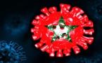 حصيلة فيروس كورونا بالمغرب ليوم الخميس 25 فبراير