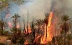 المغرب يواجه تهديدات حقيقية جراء التغير المناخي وارتفاع الحرارة
