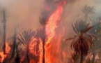 ماهي استعدادات الحكومة لمواجهة احتمالات نشوب الحرائق في الغابات؟