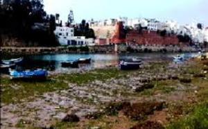 ساكنة أزمور تطالب بفتح مصب واد أم الربيع لتفادي تكرار الكوارث البيئية